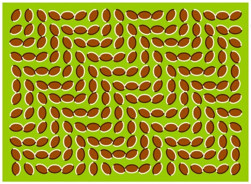 woahhh... Check out the nuts, very weird illusion.  Even better when you're on drugs.