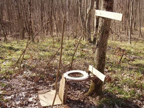 Worthless forest toilet