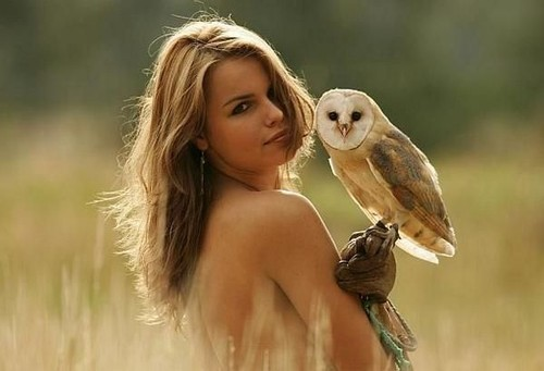 Naked girls + owls = sexy?