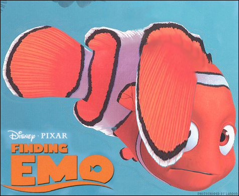 "You know all these emo kids with their hair over one eye, hanging out at holister trying to be punk rockers. I decided to make a parody picture, ""Finding Emo"" instead of ""Nemo""."
